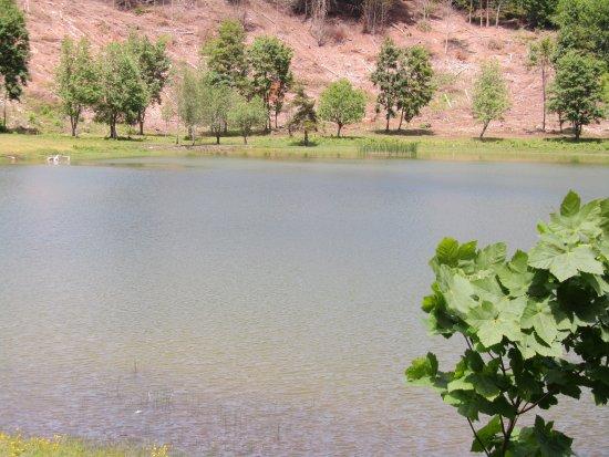 Le Lac Ferrand (07)
