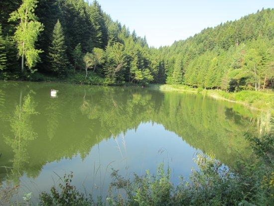 Le Lac de Tury - Nebias (11)