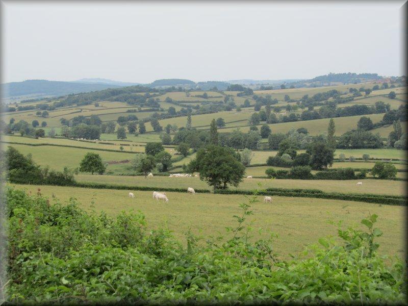 Le Paysage au Pied du Mont Brogny