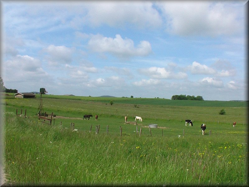 Prairies près de La Ferme de Bel Air
