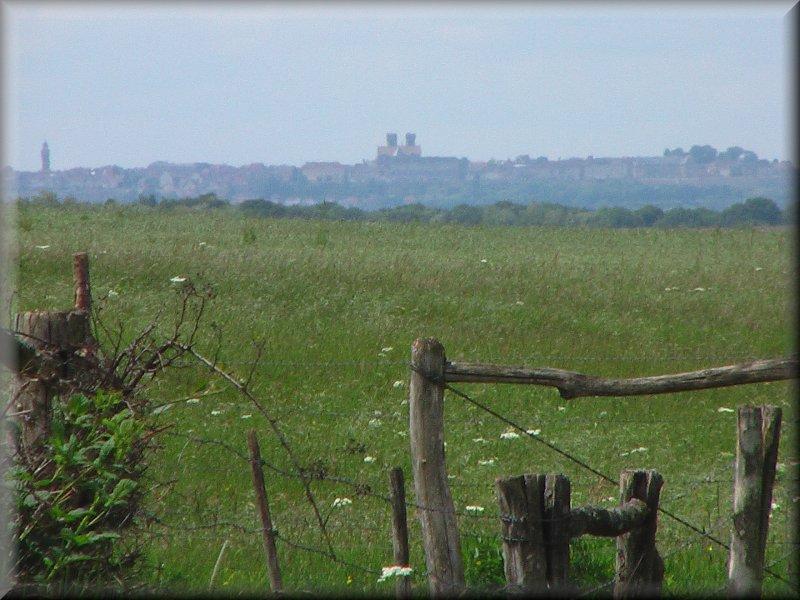 La Ville de Langres au loin