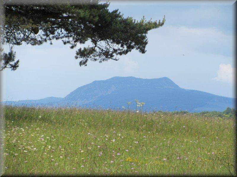 Le Mont Mézenc avant Hugons
