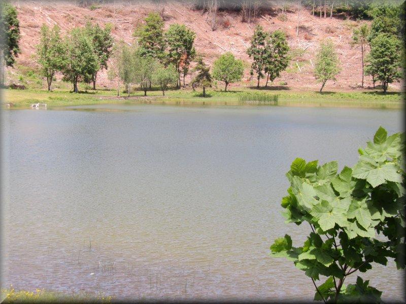 La Lac Ferrand