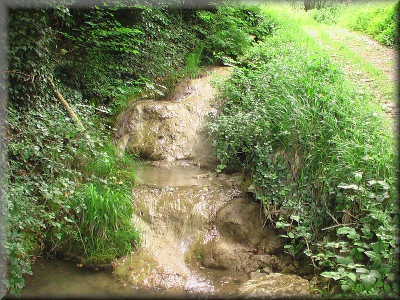 Le Sentier le Long du Ruisseau du Verger