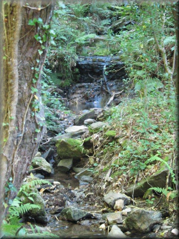 Le Ruisseau de la Capoulade, avant Combes