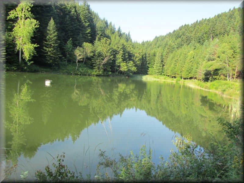 Le Lac de Tury