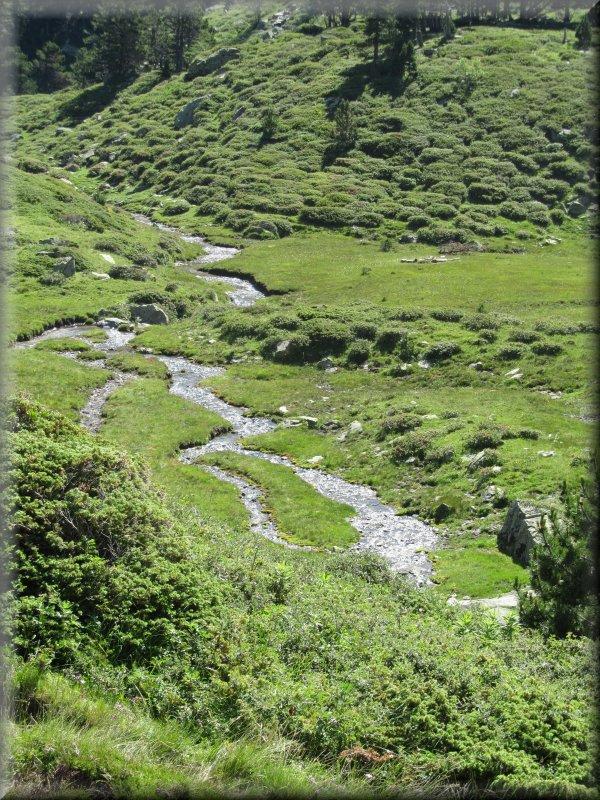 Le Ruisseau de la Barbouillère, au Pied du Roc Blanc