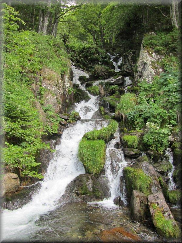 Le Ruisseau de Baxouillade en Amont d'une Passerelle