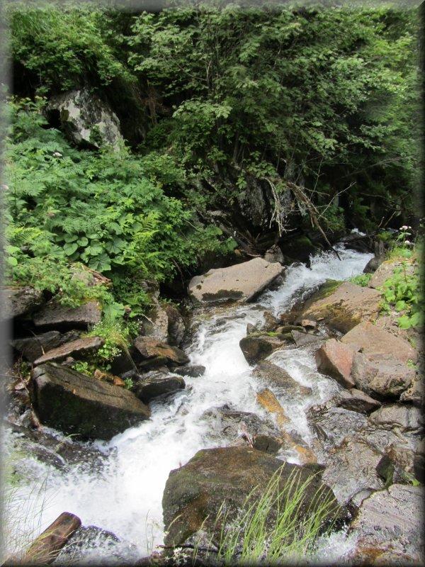 Le Ruisseau de Baxouillade en Aval d'une Passerelle