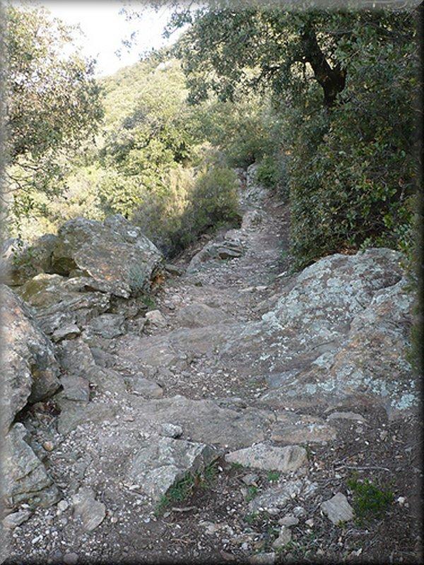 Le Sentier Avant Montahut
