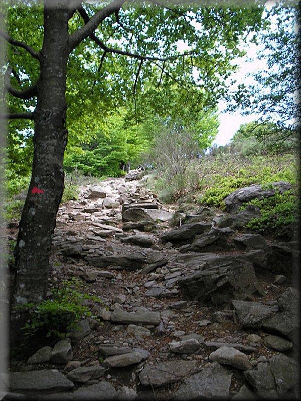 Le Sentier vers Douch