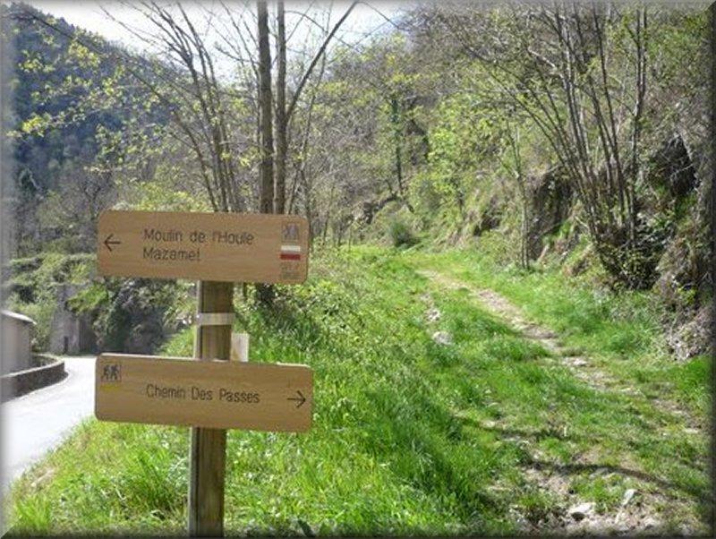 Le Sentier qui Descend de Cayenne