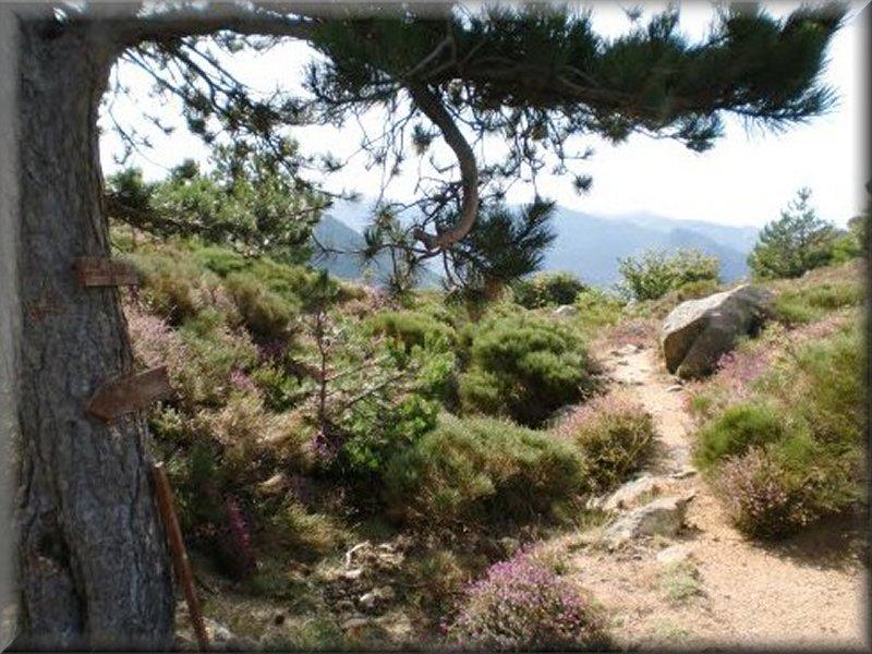 Le Col de Landres