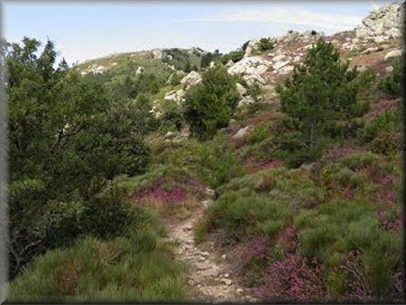 Vers le Col de Landres