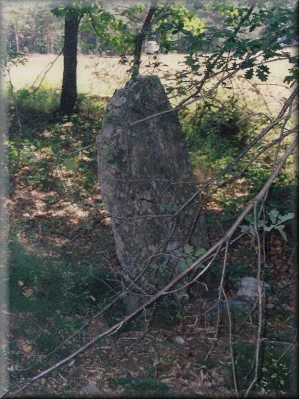 Menhir au Col des Laupies