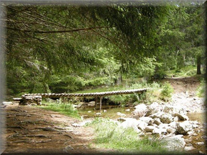 Passerelle sur le ruisseau de Pueylong