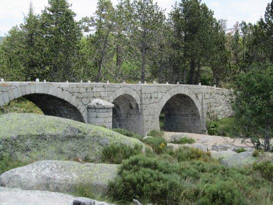 pont-du-tarn.jpg